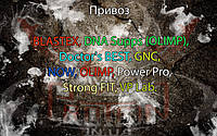 Поступление: BLASTEX, DNA Supps (OLIMP), Doctor's BEST, GNC, NOW, OLIMP, Power Pro, Strong FIT, VP Lab.