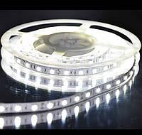 Светодиодная лента 5050 белый