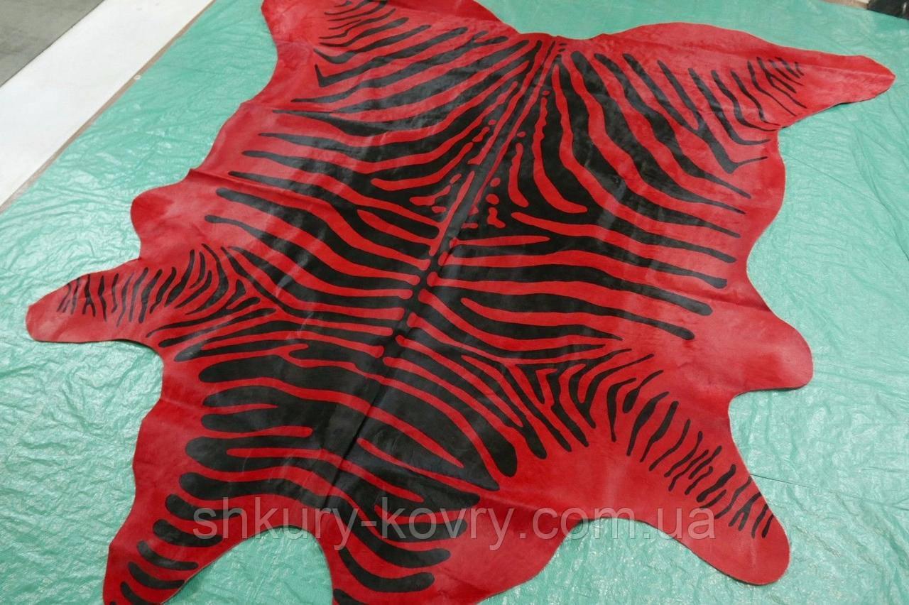 Натуральная шкура коровы с специальной окраской зебра на красном фоне