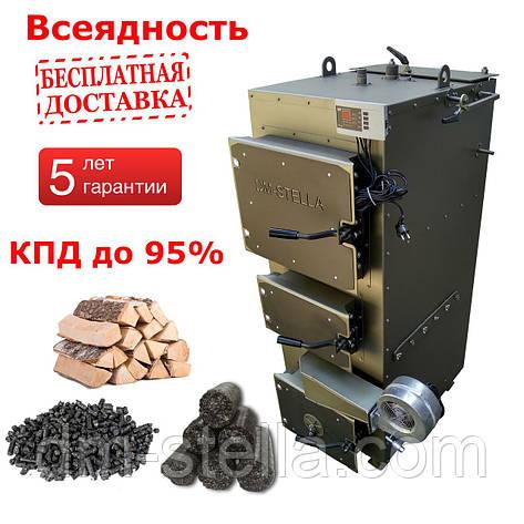 Пиролизный котел 30 кВт DM-STELLA, фото 2