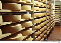 Продукти сирні, молоковмісні