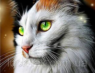 Алмазная вышивка, зеленоглазая кошка 30х20 см, квадратные стразы, полная выкладка