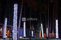 Новогоднее оформление деревьев, украшение деревьев гирляндами, подсветка деревьев