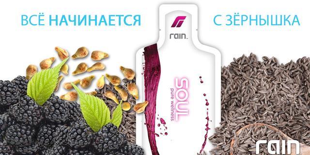 Антиоксидантный комплекс из семян SOUL для питания