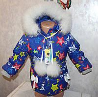 Зимний комбинезон +куртка на девочку 2-3,3-4,4-5,5-6 лет натуральная опушка (писец-Белый альбинос)