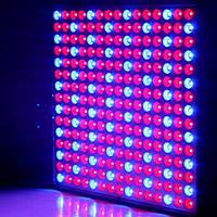 LED Grow Light 14W Red Blue Full Spectrum LED Растение Grow Light Hydroponics Flower Seed Indoor