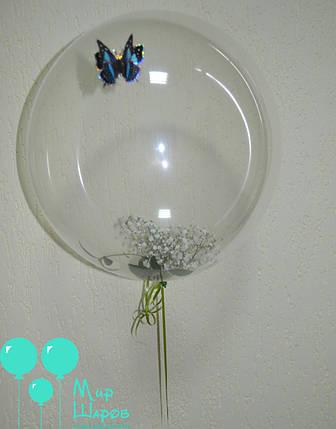 Пластиковый шар с живой флористикой внутри , фото 2