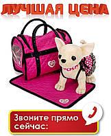 Собачка Кикки M 1621 с ковриком (аналог Chi Chi Love)