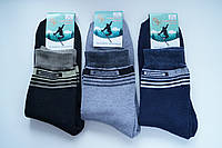 Носки мужские махровые СН Спорт