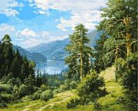 """Картина раскраска по номерам """"Вид на реку"""" набор для рисования"""