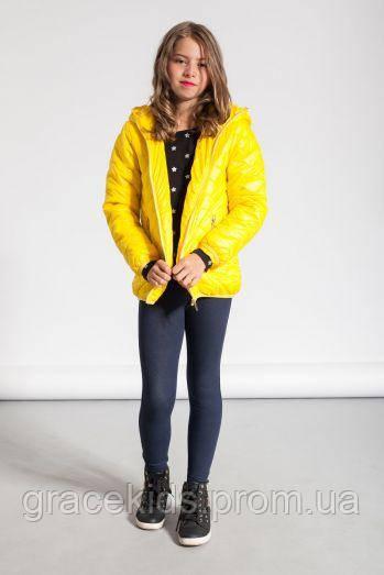 Подростковые демисезонные куртки glo-story/для девочек