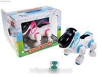Интерактивная собака-робот на р/у Космопес Tongde 905827 R/2099 HN