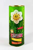 "Набор для творчества ""Бисерный цветок"" Нарцисс  Danko Toys БЦ-01"