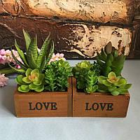 ЛЮБОВЬ Деревянный бассейн Настольный Lotus Суккулентные растения Цветочный горшок Сад Бонсай