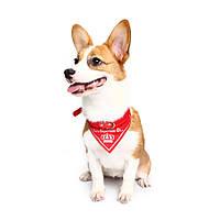 Yani HG-PLJ1 Pet Собака Red Imperial Crown Регулируемые ошейники Pet Cool Decoratoive Полотенце Pet Drcoration