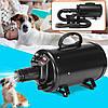 2800W Pet Волосы Сушилка Переменная скорость Уход за домашними животными Волосы Сушилка для собак и кошек US Plug, фото 4