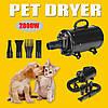 2800W Pet Волосы Сушилка Переменная скорость Уход за домашними животными Волосы Сушилка для собак и кошек US Plug, фото 5