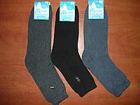 Мужские махровые носки Топ- Тап. Стречевые. р. 25- 27. Житомир. Ассорти
