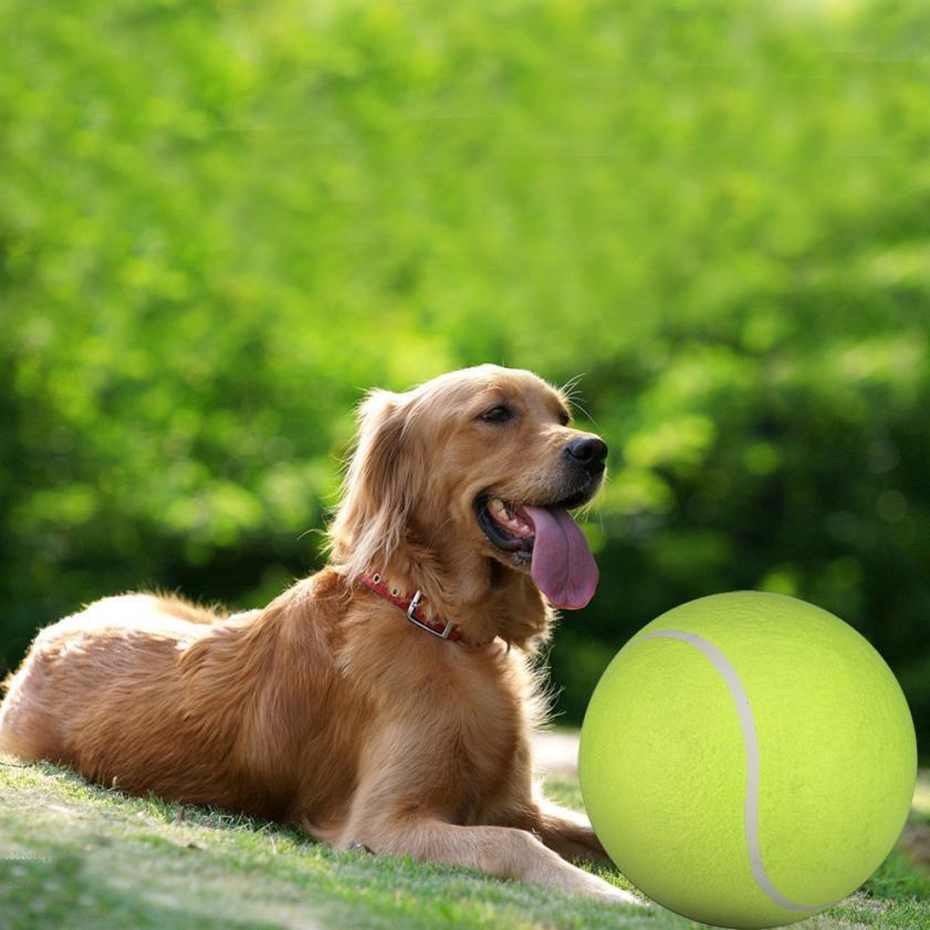 Yani DCT-2 Squishy Giant Tennis Ball Собака Игрушечный жевательный спорт На открытом воздухе Игра Throw Run Fetch 24CM  - ➊TopShop ➠ Товары из Китая с бесплатной доставкой в Украину! в Днепре