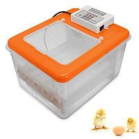16-позиционныйэлектронныйцифровойинкубаторАвтоматическийтокарный патрон для яиц из птицы Куриное утиное яйцо