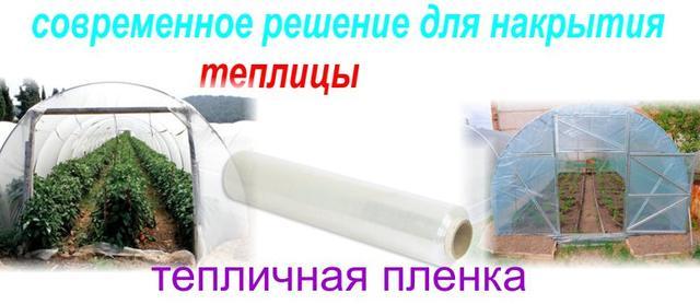 прозрачная пленка для теплиц