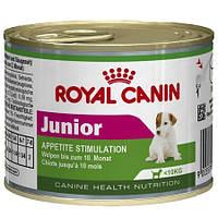 Royal Canin (Роял Канин) Junior консерва для щенков мелких пород, 195 г