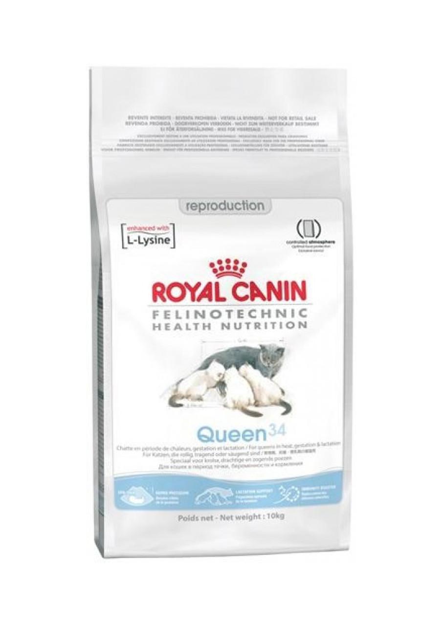 Сухой корм Royal Canin (Роял Канин) Queen 34 для кошек в период течки, беременности и лактации  4 кг.  Акция