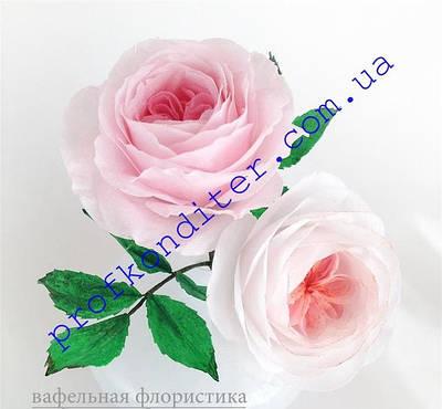 Бумага для вафельной флористики