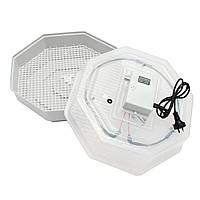 60-позиционный электронный инкубатор Автоматический люк для птицы Яйца Куриное утиное яйцо AU Plug