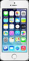 "Китайский айфон 5S (H5), дисплей 4"", Wi-Fi, 2 SIM, ТВ, Java. Белый, фото 1"