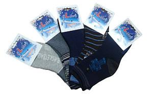 Носки  для мальчика махровые TERMO Olike, размеры 23/27-35/38, арт. 3303