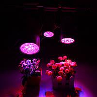 3W 7W 12W LED Растение Свет вырастает Лампа Дополнительный свет наводнения