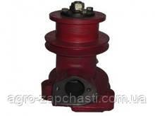 Водяной насос (помпа) МТЗ-80 (реставр.)