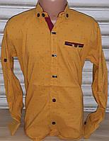Стильная стрейчевая рубашка для мальчика 6-14 лет(горчица) (пр. Турция)
