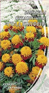 Семена бархатцев отклоненые Голд Копфен 0,5 г Семена Украины, фото 2