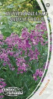 Семена ночной фиалки фиолетовой 0,5 г Семена Украины, фото 2