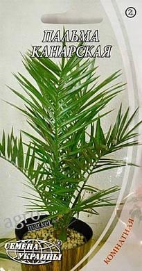 Семена пальмы канарской 2г (2шт) Семена Украины, фото 2
