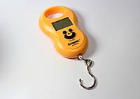 Весы кантер электронные ACS 168 50kg, весы электронные ручные до 50 кг кантер, кантер электронный