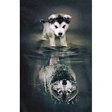 Алмазная вышивка Будущий волк