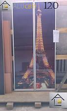 Двери купе (межкомнатные перегородки, гардеробные) на монорельсе ДСП, зеркало, фото 2
