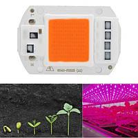 5pcs 50W 220V Full Spectrum LED COB Chip Grow Light для Растение