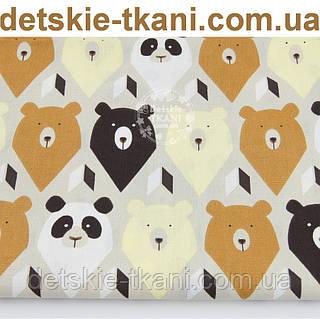 """Ткань хлопковая """"Мишки-треугольники"""" коричневые и бежевые № 1063а"""