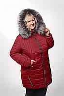 Куртка женская больших размеров ВАЛИДЕ   56, 58, 60, 62 бордовая , купить
