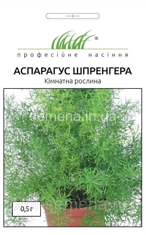 Аспарагус Шпренгера 0,5 г.