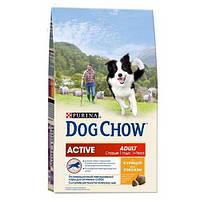 Dog Chow (Дог Чау) Active Chicken Сухой корм для активных собак с курицей, 2,5 кг