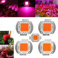 10W 20W 30W 50W 100W 380nm-840 нм Полный спектр Высокомощный LED Чип растет свет