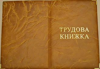 Обложка для трудовой книжки цвет жёлтый
