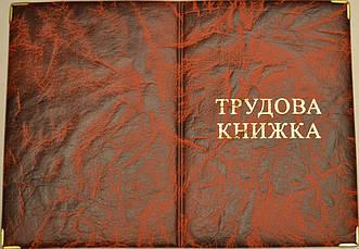 Обложка для трудовой книжки цвет красный