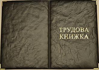 Обложка для трудовой книжки цвет чёрный