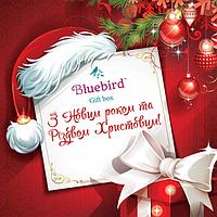 Подарочный чайный набор З Новим роком та Різдвом Христовим